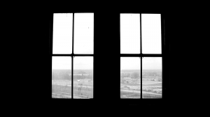 Image-1-(7th-Floor-Windows)
