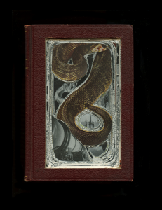 bookofknowldegeSnake002